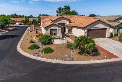 Pima County Single Family Home For Sale: 2090 E Cypress Canyon Drive