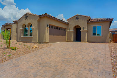 Tucson Single Family Home For Sale: 13440 N Flaxleaf Place