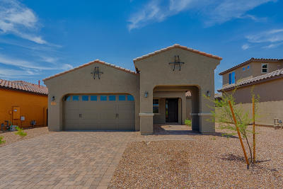 Tucson Single Family Home For Sale: 13379 N Flaxleaf Place
