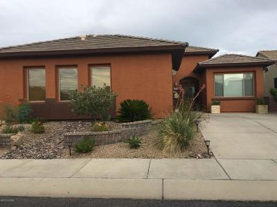 Pima County Single Family Home For Sale: 5949 S Scarlet Sky Place