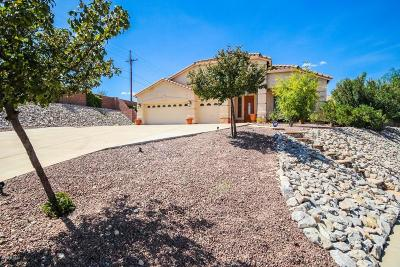 Tucson Single Family Home For Sale: 5057 N Louis River Way
