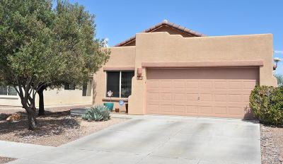 Tucson Single Family Home For Sale: 9020 N School Hill Drive