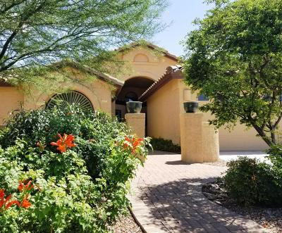 Pima County Single Family Home Active Contingent: 1915 E Desert Lark Pass