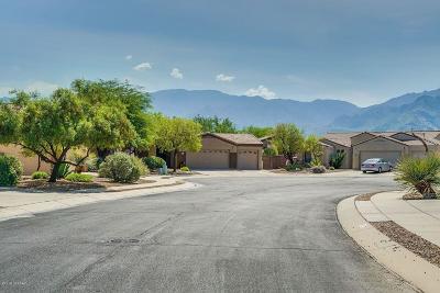 Tucson Single Family Home Active Contingent: 254 W La Veta Court