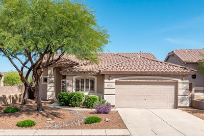 Oro Valley Single Family Home For Sale: 2537 E Big View Drive
