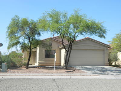 Tucson Single Family Home For Sale: 2154 W Painted Sunset Circle