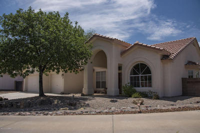 Tucson Single Family Home For Sale: 3071 W Corte Madelena