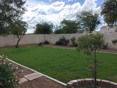 Oro Valley Single Family Home Active Contingent: 12905 N Meadview Way
