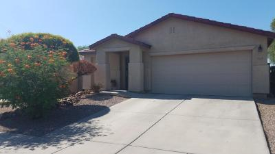 Tucson Single Family Home For Sale: 9339 N June Bug Drive