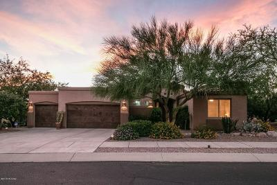 Oro Valley Single Family Home For Sale: 12289 N Washbed Drive