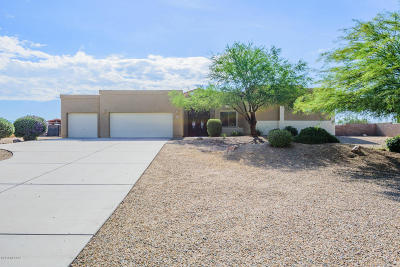 Vail Single Family Home For Sale: 13560 S Sonoita Ranch Circle