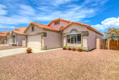 Tucson Single Family Home For Sale: 8965 E Laurie Ann Drive