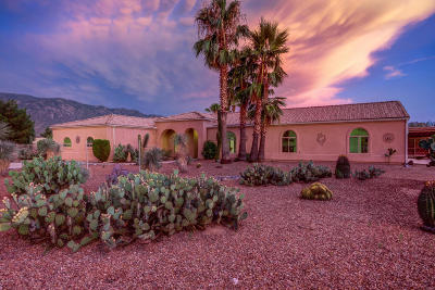 Tucson Single Family Home For Sale: 4072 E Adams Rib Place