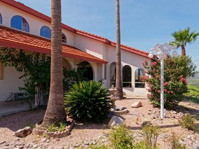 Rio Rico Single Family Home For Sale: 333 Valley View Drive