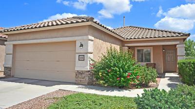 Sahuarita Single Family Home Active Contingent: 1206 W Via Cerro Colorado