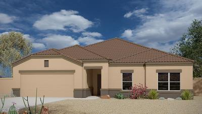 Sahuarita Single Family Home For Sale: 17750 S Silent Meadows Path
