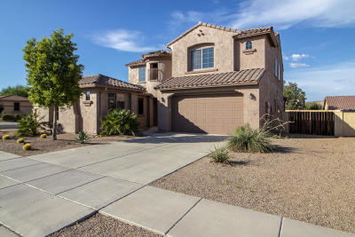 Sahuarita Single Family Home Active Contingent: 804 W Camino Tunera