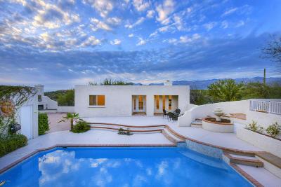 Tucson Single Family Home For Sale: 12825 E Cape Horn Drive