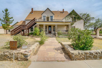 Oracle Single Family Home For Sale: 1205 N Hunter Circle