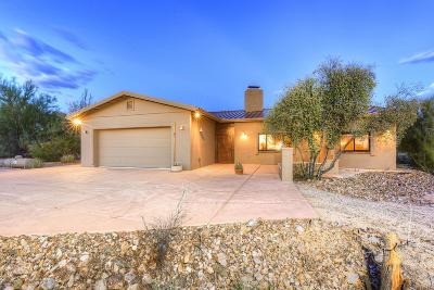 Tucson Single Family Home For Sale: 5875 W Turkey Lane