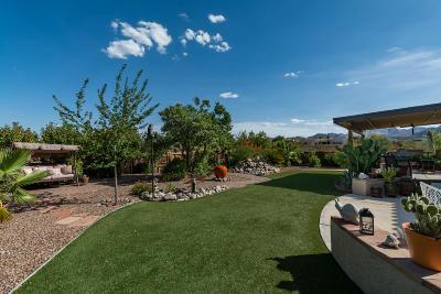 Tucson Single Family Home For Sale: 4029 W Boras Mine Court