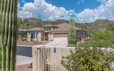 Marana Single Family Home Active Contingent: 13715 N Heritage Canyon Drive