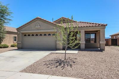 Marana Single Family Home Active Contingent: 12252 N Gadwall Drive