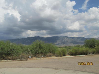 Tucson Single Family Home Active Contingent: 3889 E Sailboat Place