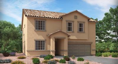 Marana Single Family Home For Sale: 12064 N Walz Drive Drive W