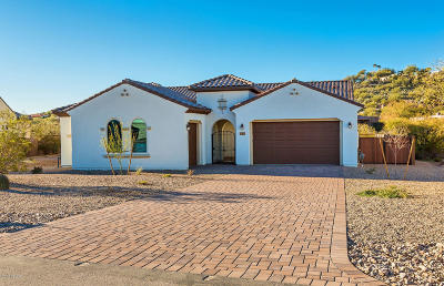 Single Family Home For Sale: 3534 N Molino Canyon Place N