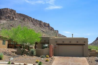 Tucson Single Family Home For Sale: 3065 S Three D Court