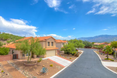 Tucson Single Family Home For Sale: 1170 W Wolfe Knoll Way