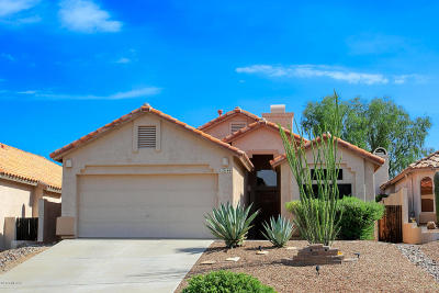Oro Valley Single Family Home For Sale: 12144 N Makayla Canyon Drive