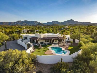 Tucson Single Family Home For Sale: 5423 N Blue Bonnet Road
