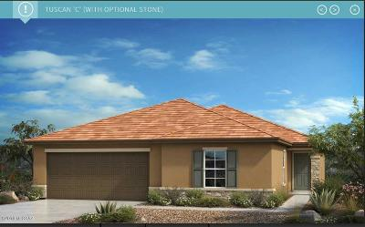 Tucson Single Family Home For Sale: 8842 N Hardy Preserve Loop