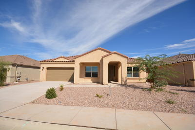 Marana Single Family Home For Sale: 9954 N Saguaro Bloom Way