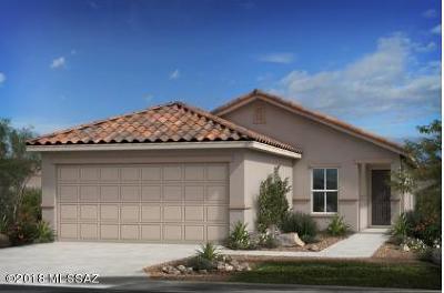 Tucson Single Family Home For Sale: 2164 W Ephesus Court