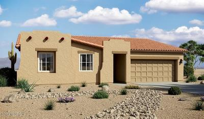 Tucson Single Family Home For Sale: 3140 S Three D Court