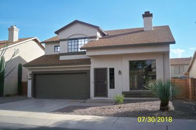Tucson Single Family Home For Sale: 2995 W Country Ranch Drive