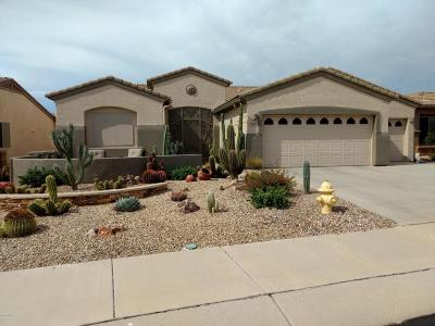Green Valley Single Family Home For Sale: 2167 W Calle Cacillo