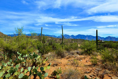 Oro Valley Residential Lots & Land For Sale: 14686 N Granite Peak Place #270