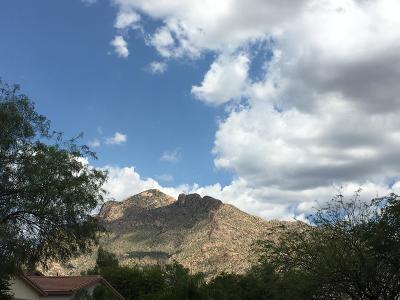 Tucson Single Family Home Active Contingent: 411 W Tara Danette Drive