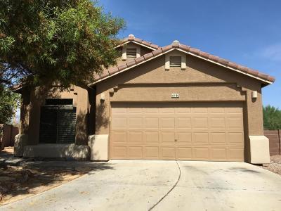 Tucson Single Family Home For Sale: 4146 W Diamond Butte Court