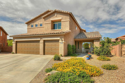Tucson Single Family Home For Sale: 3351 N Fork River Court