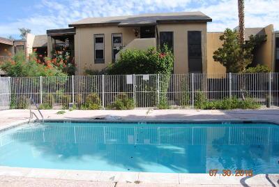 Tucson Condo Active Contingent: 1620 N Wilmot Road #F229