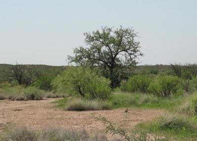 Cochise County Residential Lots & Land For Sale: N Lee Street