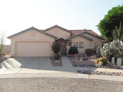 Tucson Single Family Home For Sale: 4256 W Firethorne Street