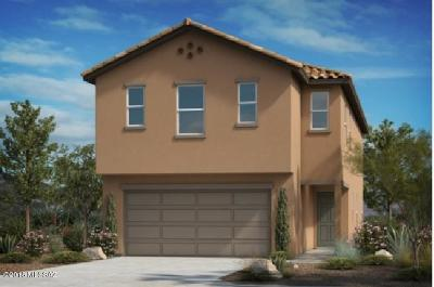 Tucson Single Family Home For Sale: 5909 N Umbra Court N