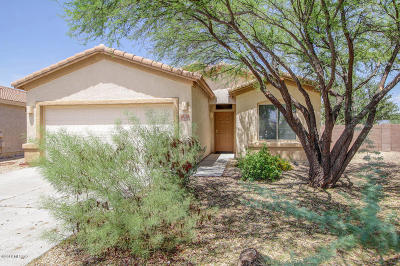 Single Family Home Active Contingent: 12693 E Red Iron Trail