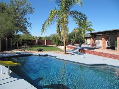 Tucson Single Family Home For Sale: 1245 W Calzada Court